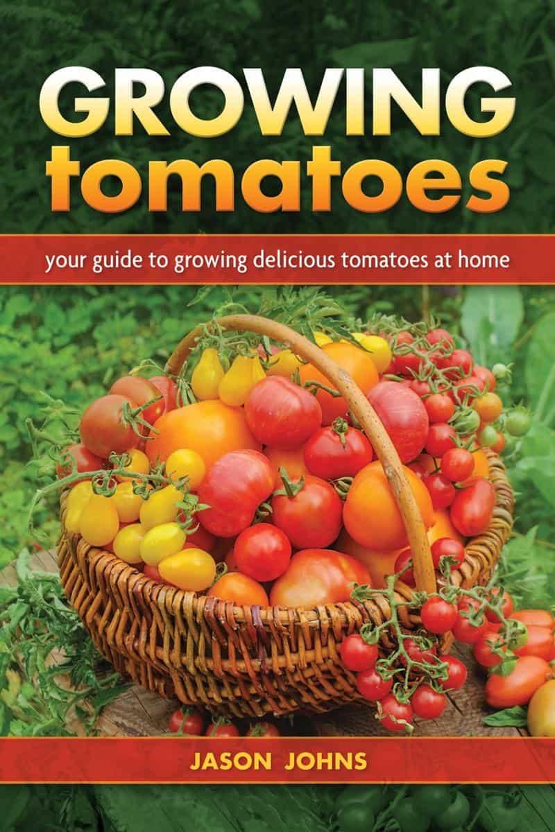 4. Growing Tomatoes